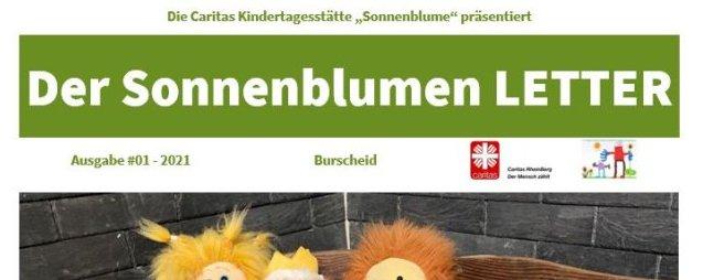 Der Sonnenblumen LETTER – Newsletter, Zeitung, Update?